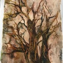 Welsh trees